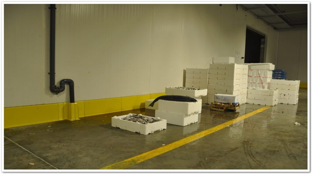 Industrial Skirting Protection Application   Vibroser